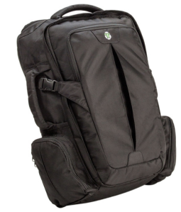 Black travel backpack.